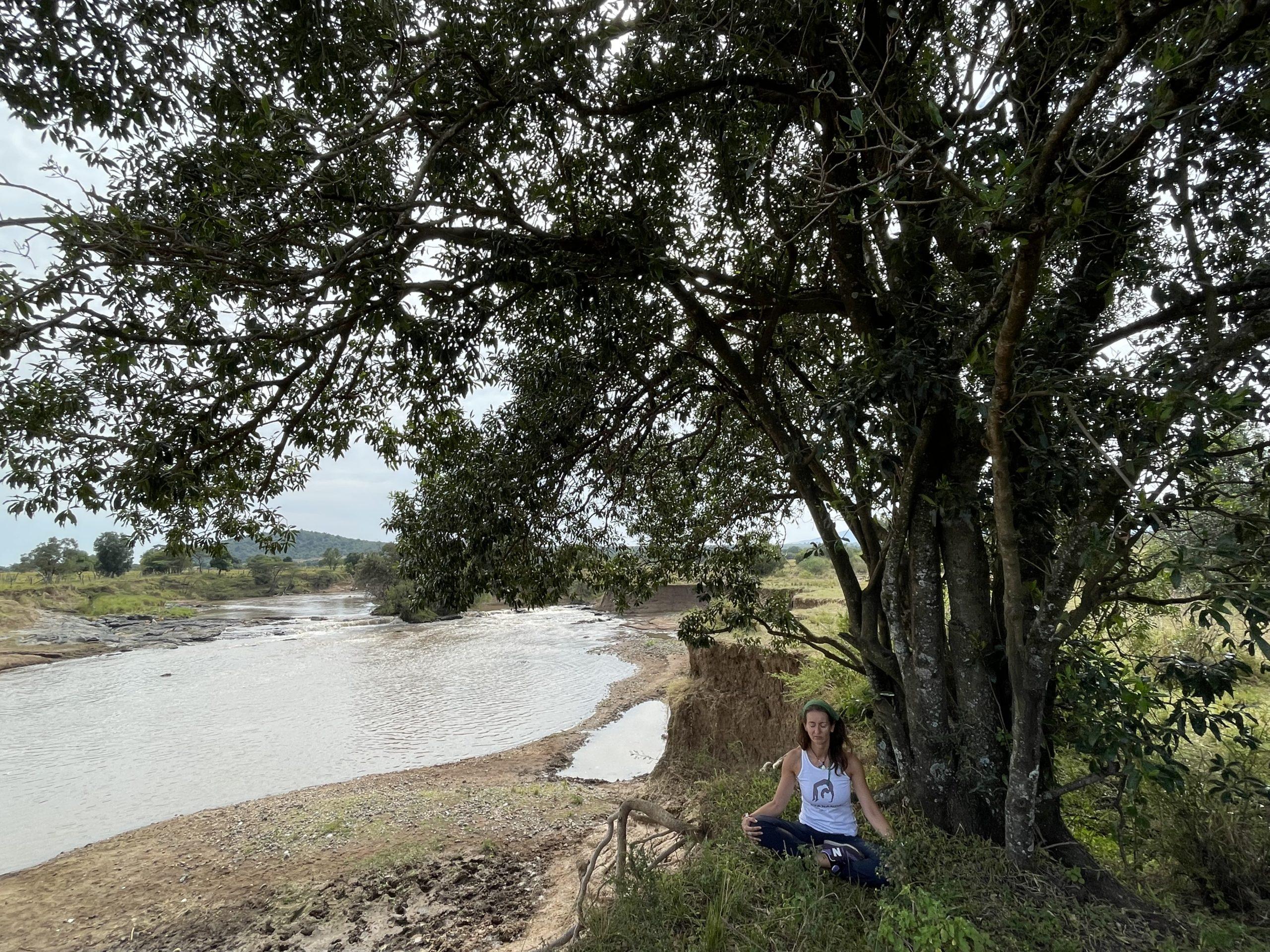 Meditando en la sabana